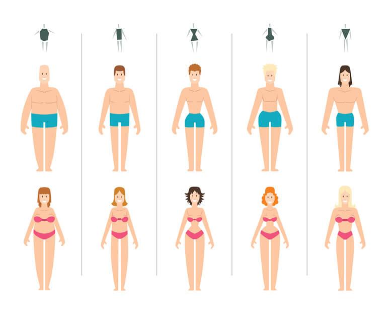 Figurtypen von Damen und Herren